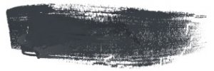 SC355Platin